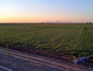 The Sutter Buttes from the Sacramento River levee road (Cranmore Road) at sunset